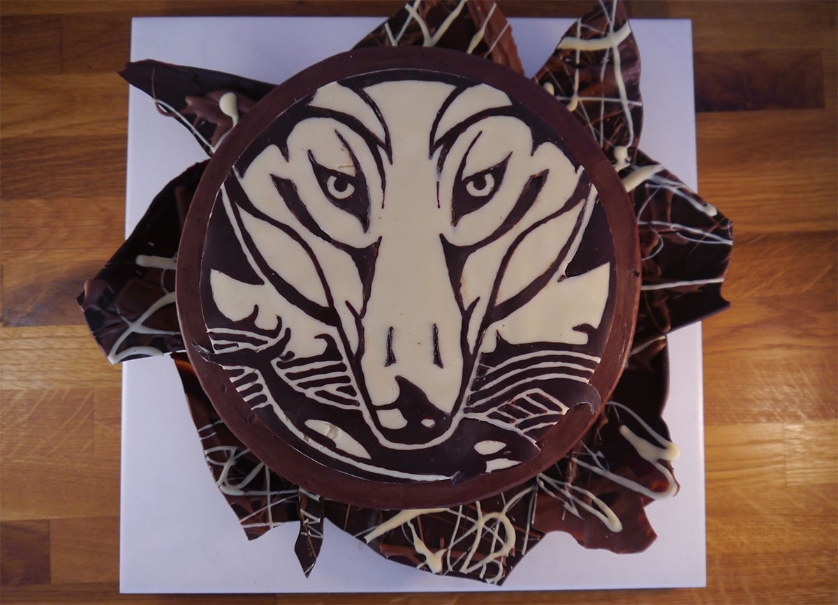 wolf logo in chocolate print on a 9